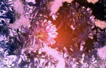 Crystalline glazes13.